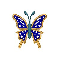 Image of butterfly31.jpg