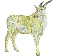 Embroidery design of an eland antilope.
