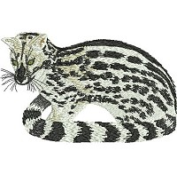 Embroidery design of a small spotted genet.