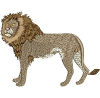 Embroidery design of a lion