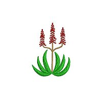 Embroidery design of an aloe plant.