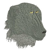 Chagma baboon embroidery design.