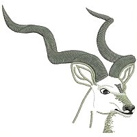 Kudu embroidey design.