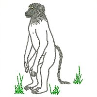 Chagma baboon embroidery design