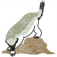 Badger embroidery design