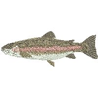 Image of petrainbowtrout200.jpg