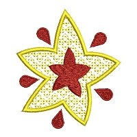 Star embroidery design.